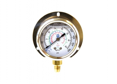 Blue Compound Oil Filled Gauge